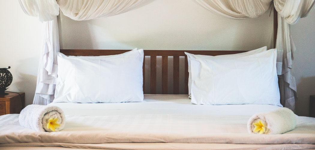 Wat te doen tegen bedbugs