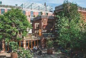De leukste groene tips voor Antwerpen