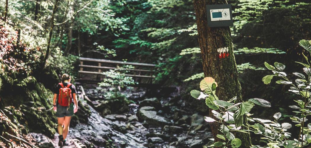 Ninglinspo wandeling in de Ardennen