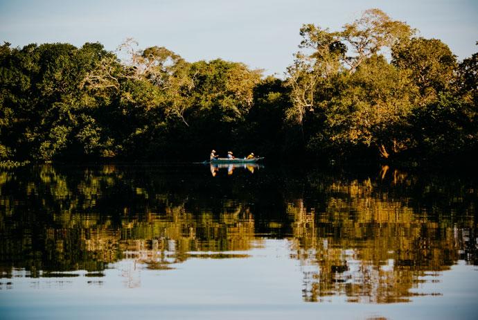 Pantanal, Brazilië