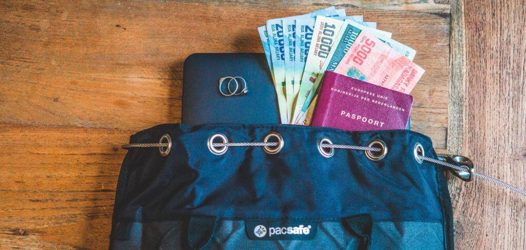 Draagbare reiskluis Pacsafe Travelsafe