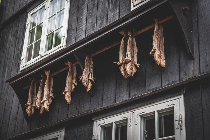 Tips voor Torshavn, Faeröer Eilanden