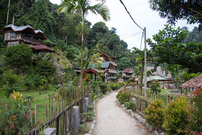 Bukit Lawang Trekking: Alle informatie + handige reistips