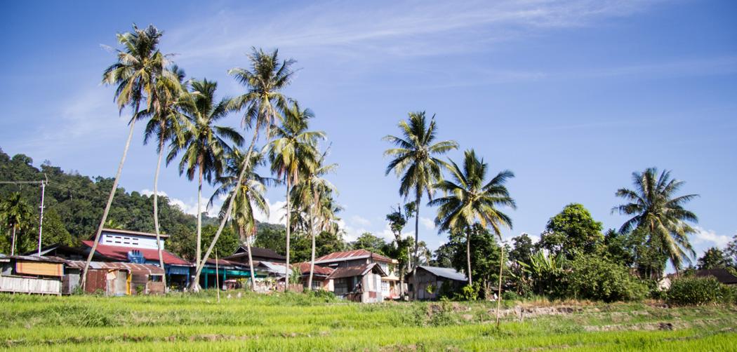 Indonesië: 17 dagen in Sumatra