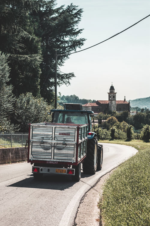 Colli Euganei, Veneto