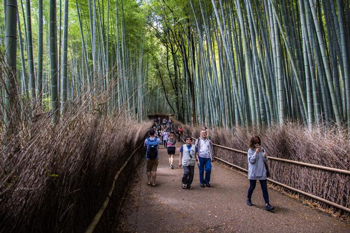 Bezienswaardigheden Kyoto