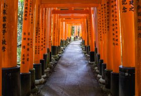 Fushimi-Inari Taisha: Dit moet je weten over je bezoek aan hét symbool van Japan