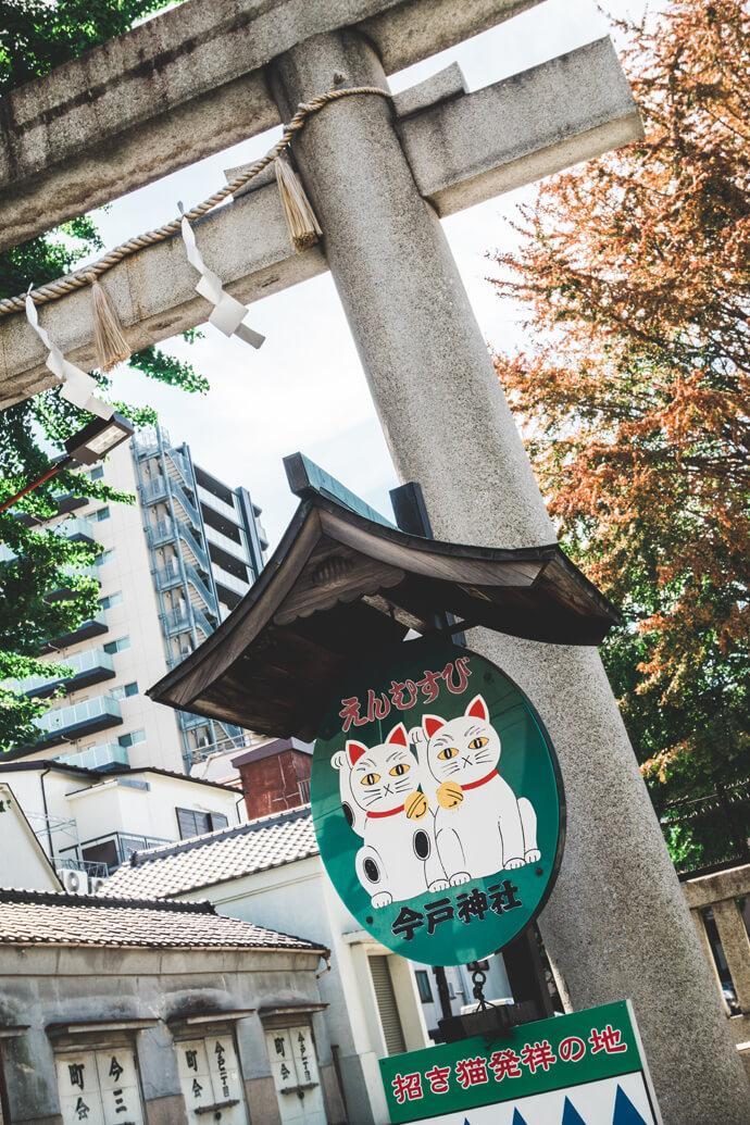 Kattentour in Tokyo