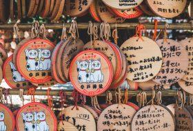 Leer een onbekende kant van Tokyo kennen tijdens een kattentour