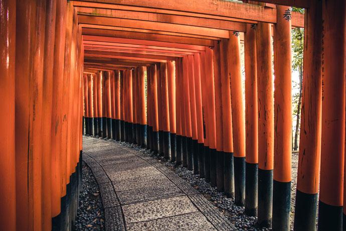 Reizen naar Japan: dit moet je weten