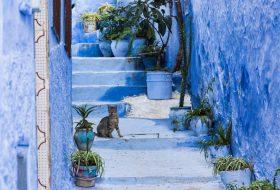 Chefchaouen: 10 x doen in het blauwe stadje van Marokko