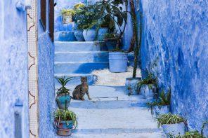 Chefchaouen: 10 x doen in het blauwe stadje van Marokkko