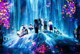 Het Mori Building Digital Art Museum in Tokyo: misschien wel het mooiste museum op aard