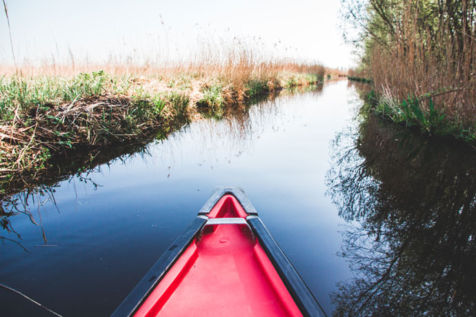 Wetlands Amsterdam