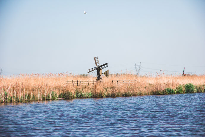 Polders ten noorden van Amsterdam