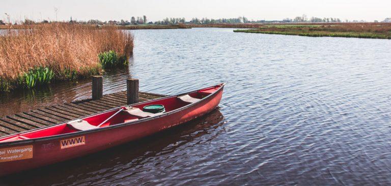 Wetlands Safari ten noorden van Amsterdam
