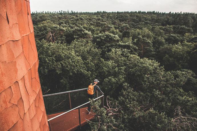 Uitkijktoren Appelscha Bosbergtoren