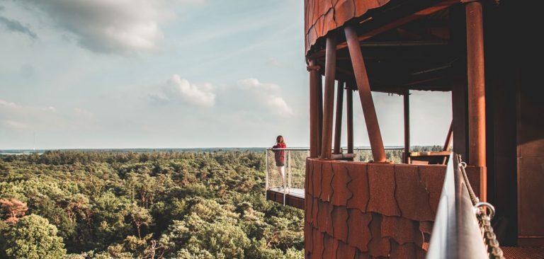 Bosbergtoren in Appelscha