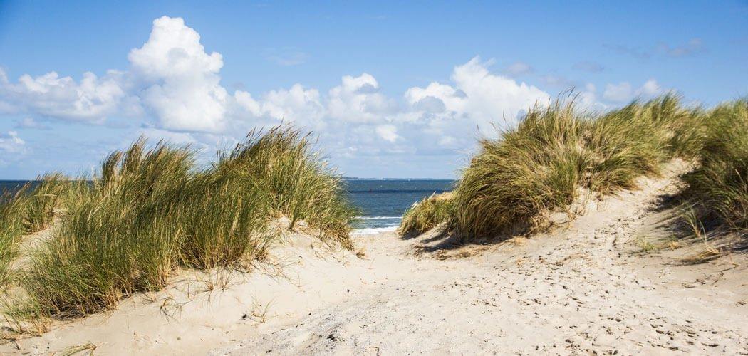 Wat te doen op Vlieland: Tips en activiteiten