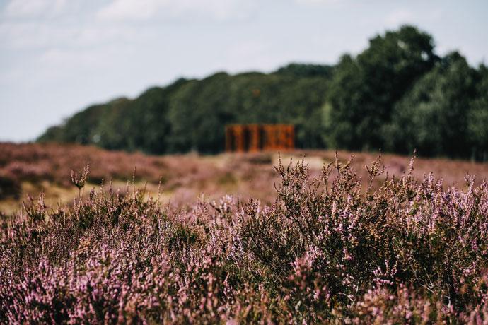 Ginkelse Heide, Ede