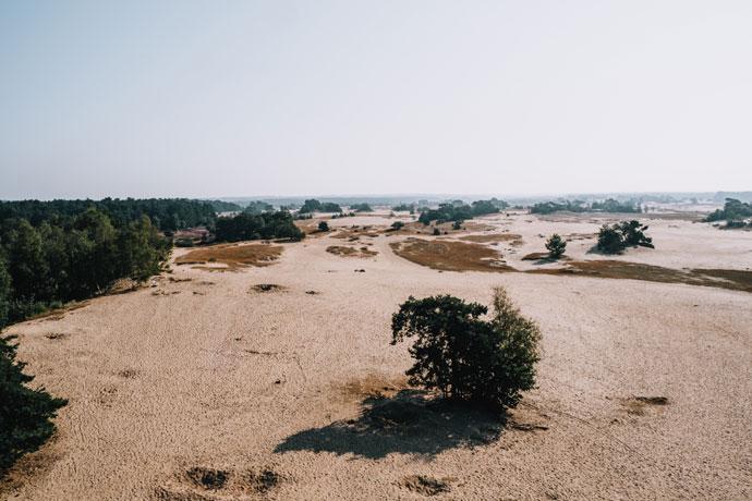 Mooiste plekken op de Veluwe: Kootwijkerzand