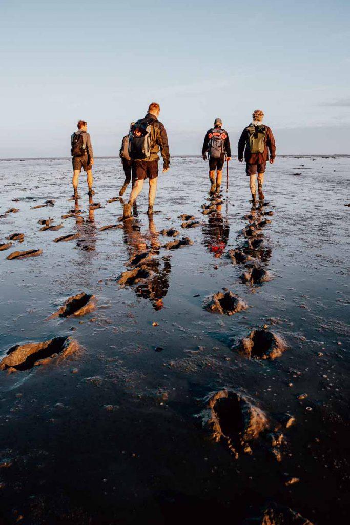 Wadlopen op de Waddenzee