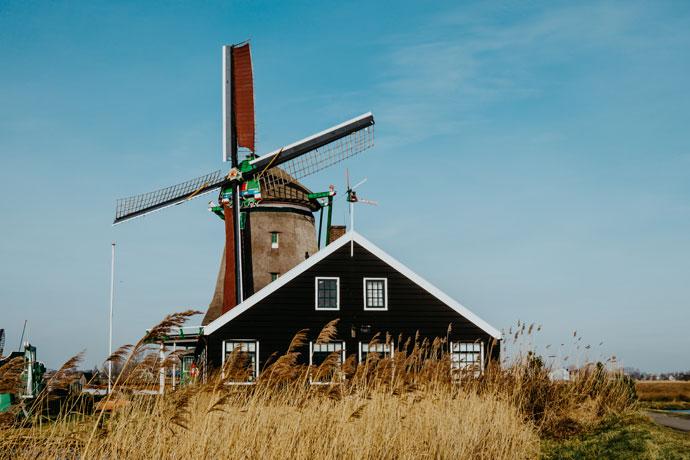 Zaanse Schans, Laag Holland