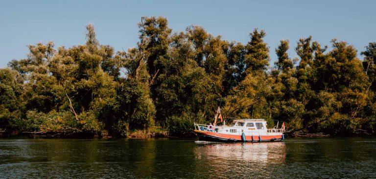 NLDelta: op expeditie in de Biesbosch en Haringvliet