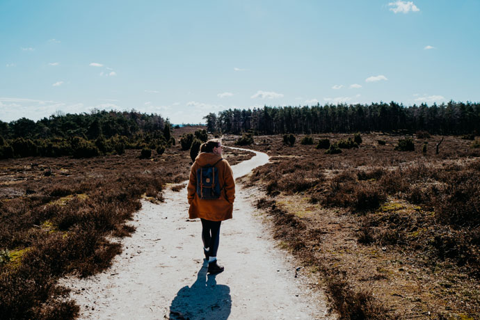 Wandelen bij de Lemelerberg
