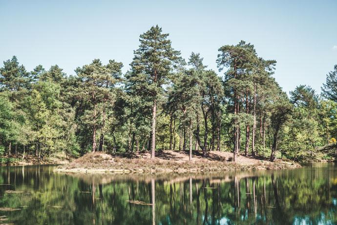 Utrechtse Heuvelrug Nationaal Park