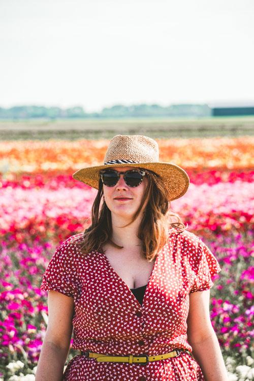 Bollenvelden in zomer in de Kop van Noord-Holland