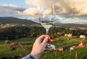 Noord Portugal en de wijnroute van de Vinho Verde