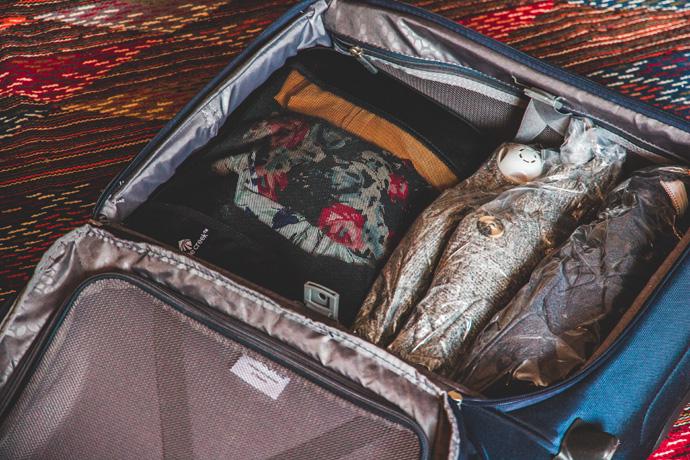 Samsonite Spark SNG Upright handbagage koffer
