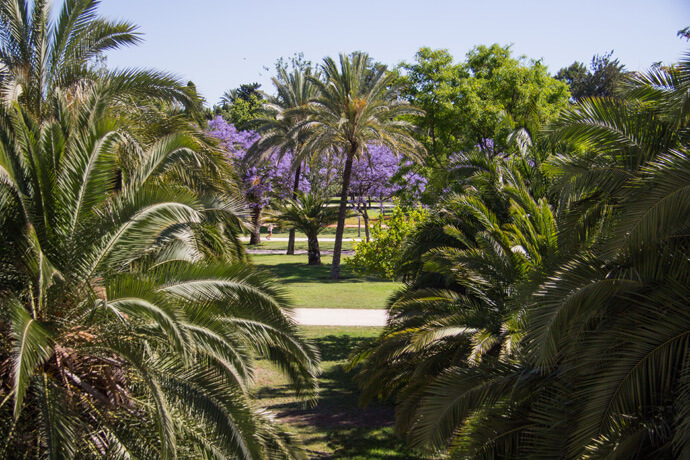Stedentrip Valencia: 20 tips voor de leukste bezienswaardigheden en activiteiten in Valencia