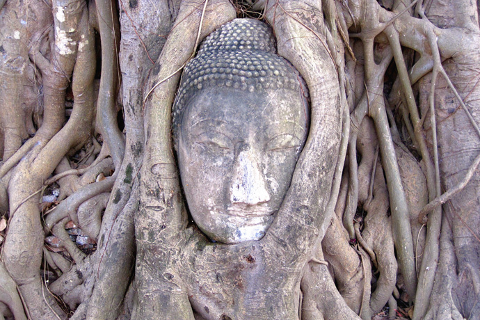 Backpacken Thailand: Ayutthaya