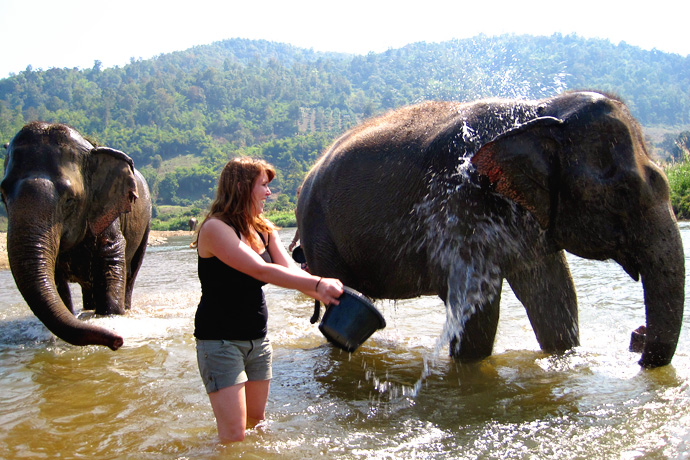 Backpacken Thailand: Elephant Nature Park