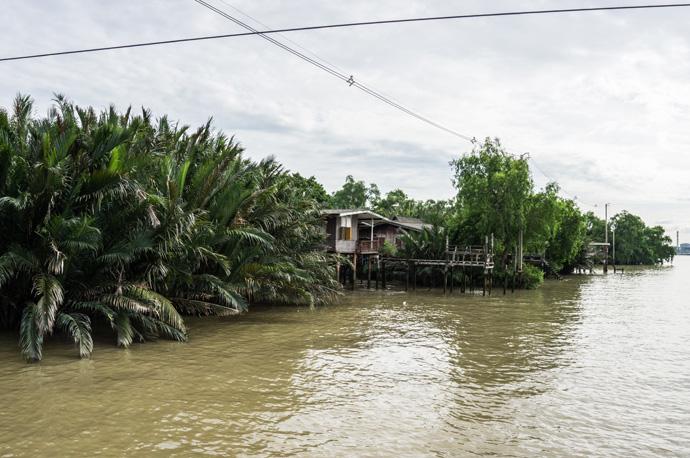 Doen in Bangkok: Fietstour met