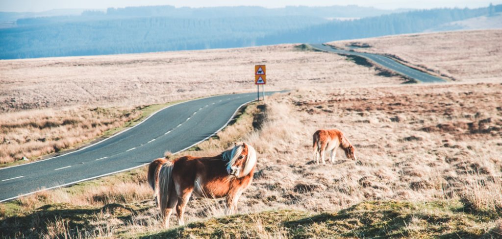 Tips voor een rondreis Wales