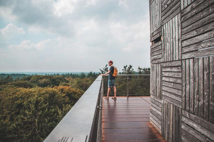 Uitkijktoren Kaapse Bossen Utrecht