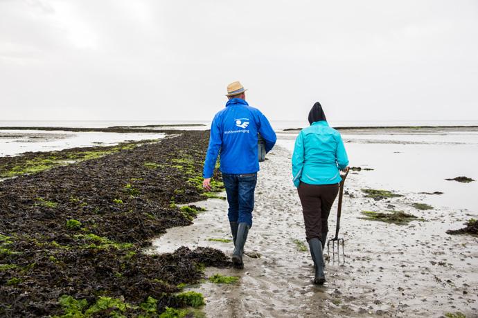 Proef de Waddenzee tijdens het wadlopen op Terschelling
