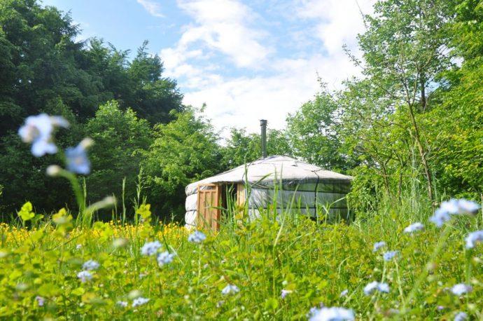 Romantische yurt in Rijsbergen