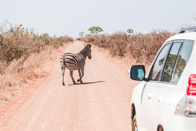 Een auto huren in Zuid-Afrika: mijn ervaringen