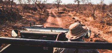 De Big 5 spotten tijdens een safari in Zuid-Afrika