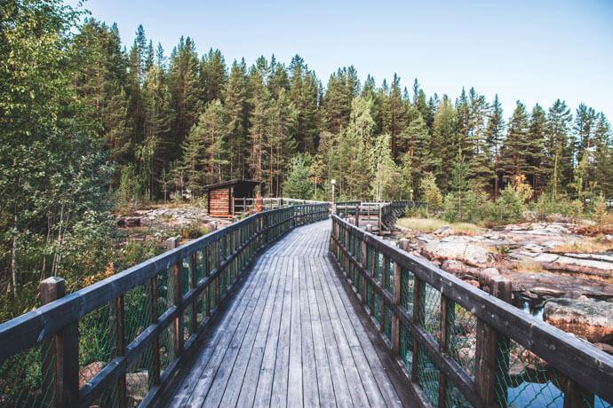 Vakantie Zweeds Lapland in de zomer